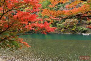 อาราชิยาม่า (ภูมิภาคคันไซ) ช่วงเวลา : กลางเดือนพฤศจิกายน – ปลายเดือนพฤศจิกายน