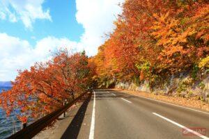 โทวาดะ (ภูมิภาคโทโฮขุ) ช่วงเวลา : กลางเดือนตุลาคม – ปลายเดือนตุลาคม