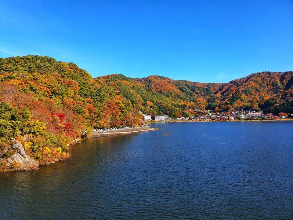Kawaguchiko Autumn 2019 10 1
