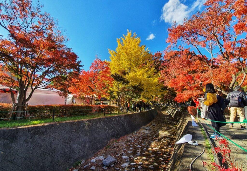 Kawaguchiko Autumn 2019 10