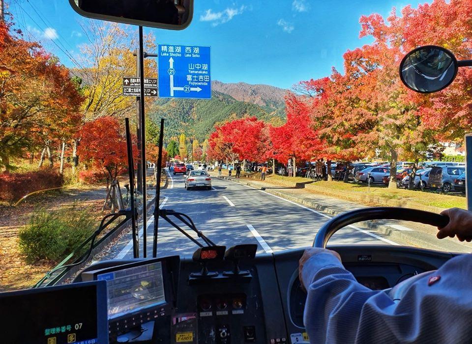 Kawaguchiko Autumn 2019 11