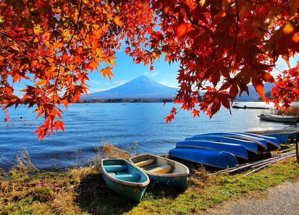 Kawaguchiko Autumn 2019 2 1
