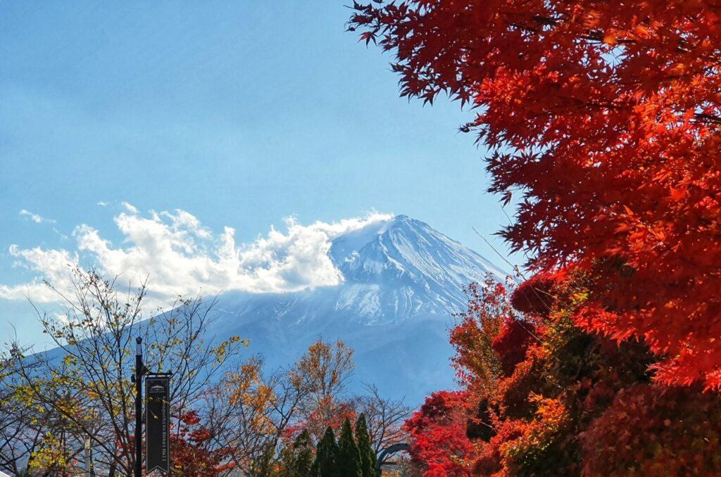 Kawaguchiko Autumn 2019 2