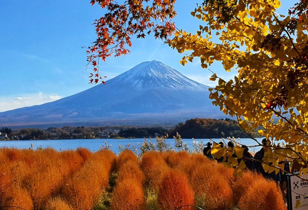 Kawaguchiko Autumn 2019 3 1