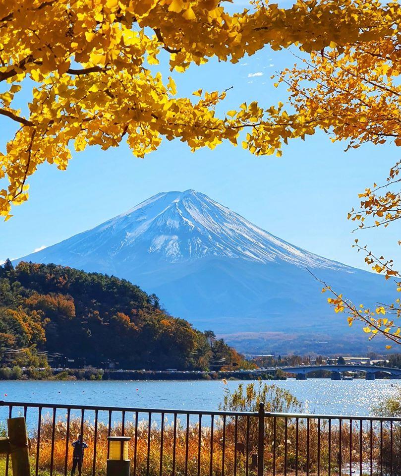 Kawaguchiko Autumn 2019 5 1
