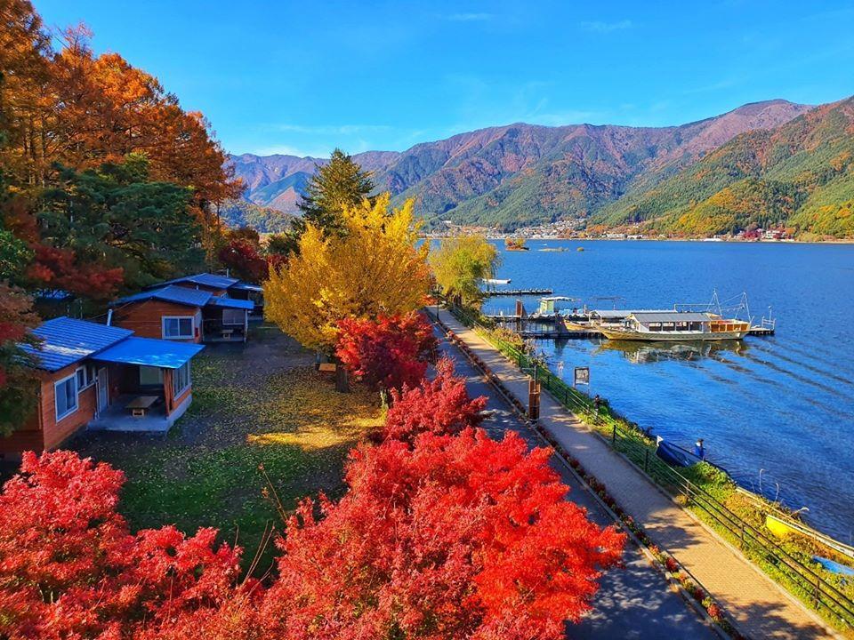Kawaguchiko Autumn 2019 8 1