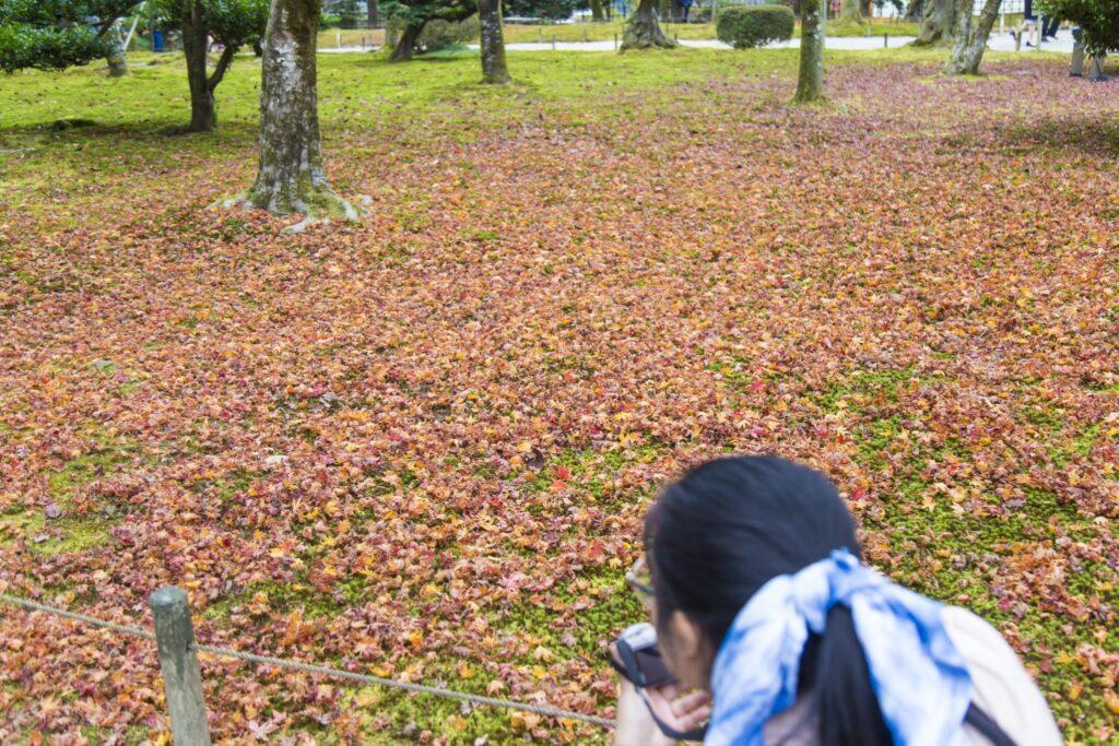 Kenrokuen Garden 05