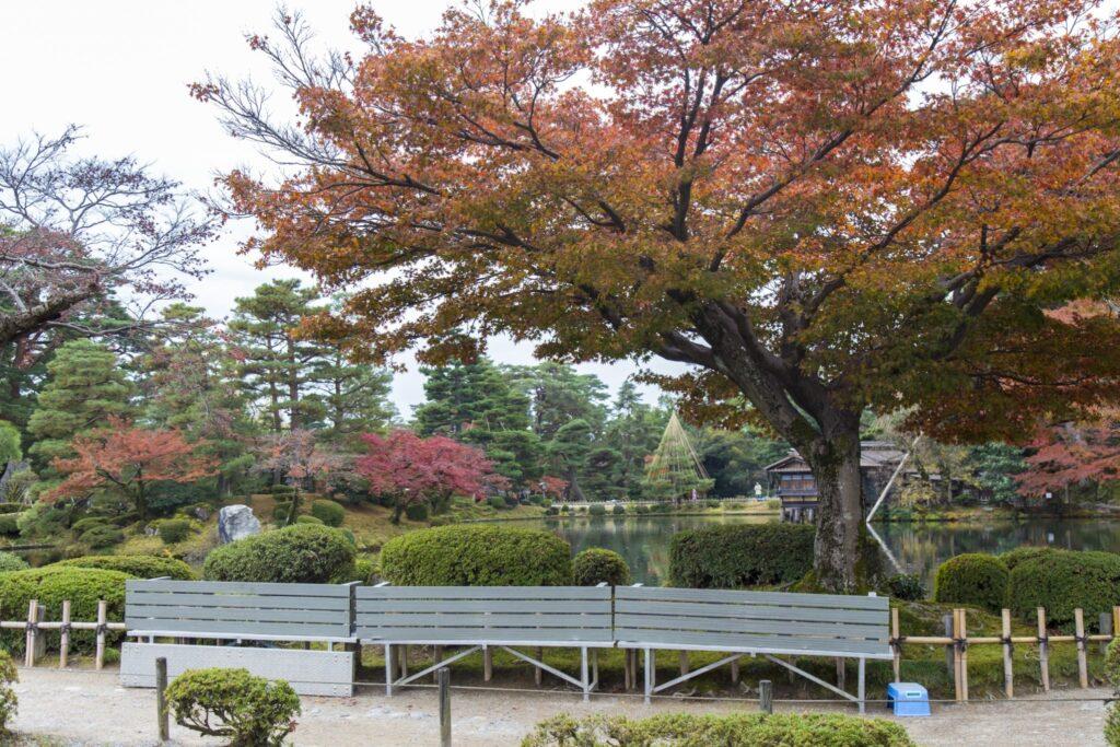 Kenrokuen Garden 09