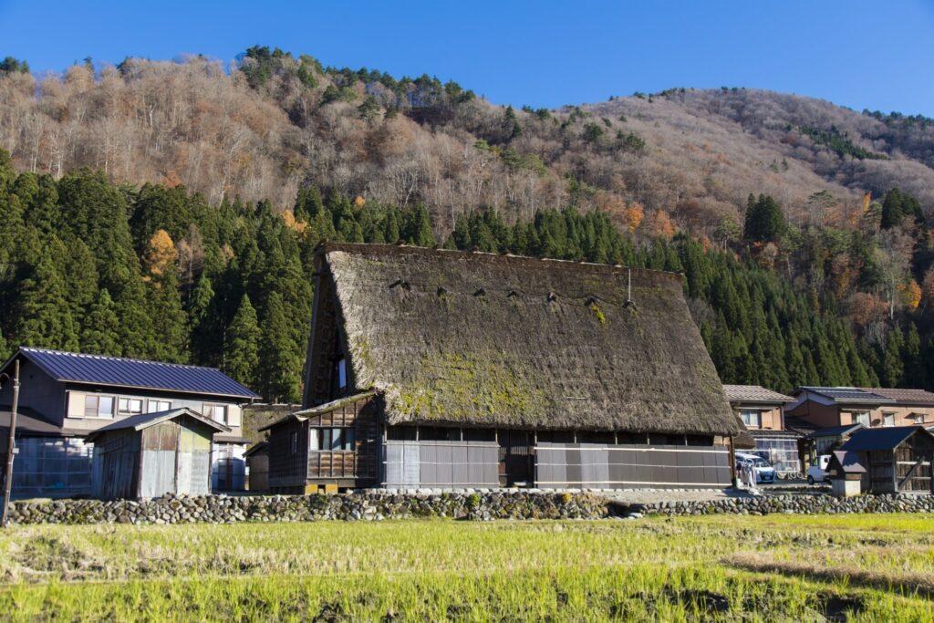 Shirakawago update 07
