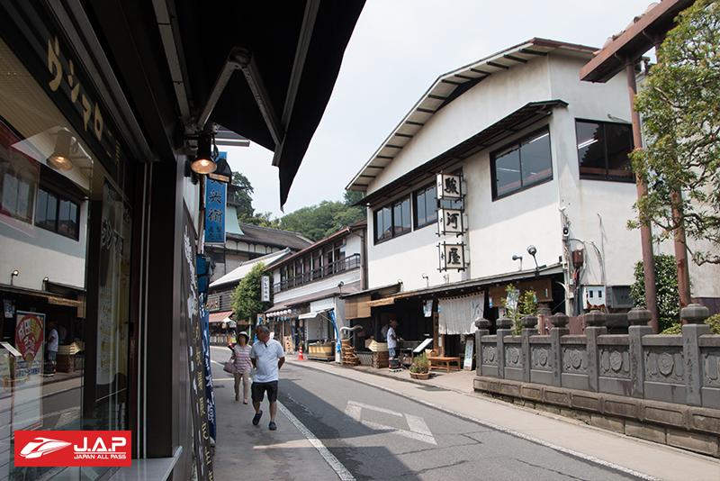 Omotesando Road 1